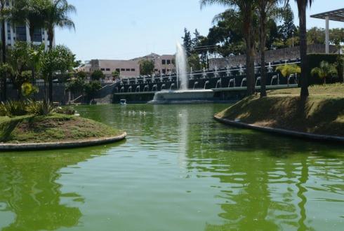 Inauguran en Guadalajara el acuario más grande de México