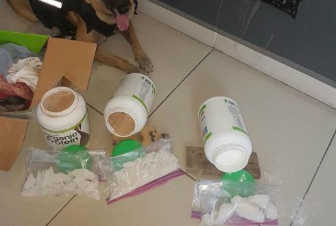 Binomio canino localiza 22 kilogramos de marihuana en paquetería de Guadalajara