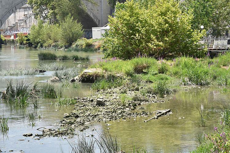Se termina el agua en Roma — Alarma