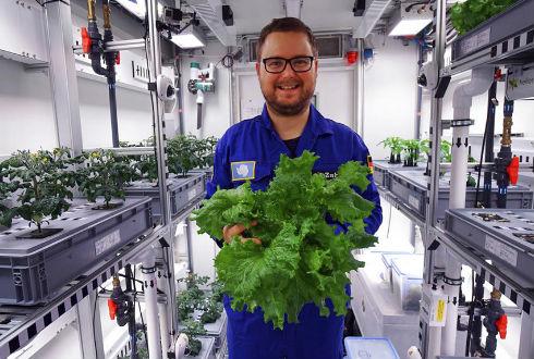 Los Científicos cosecharon vegetales en la misma Antártida