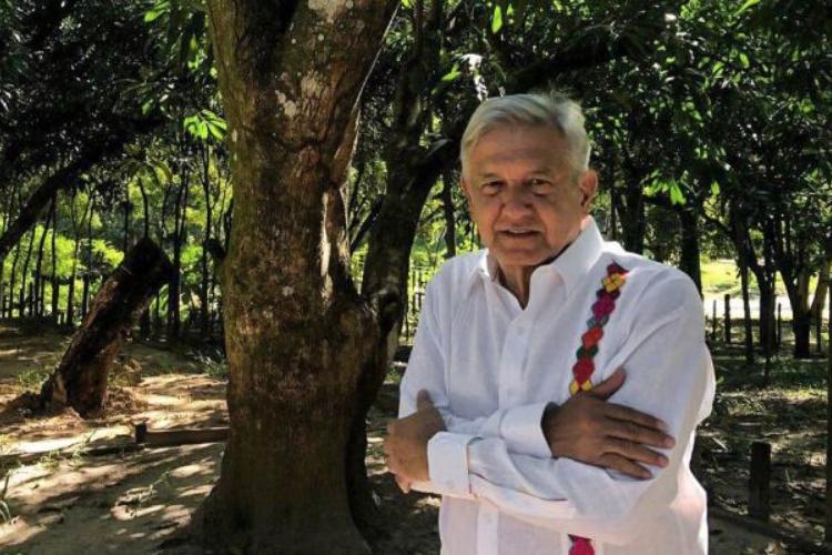 En este año que termina los mexicanos decidieron por la transformación: AMLO