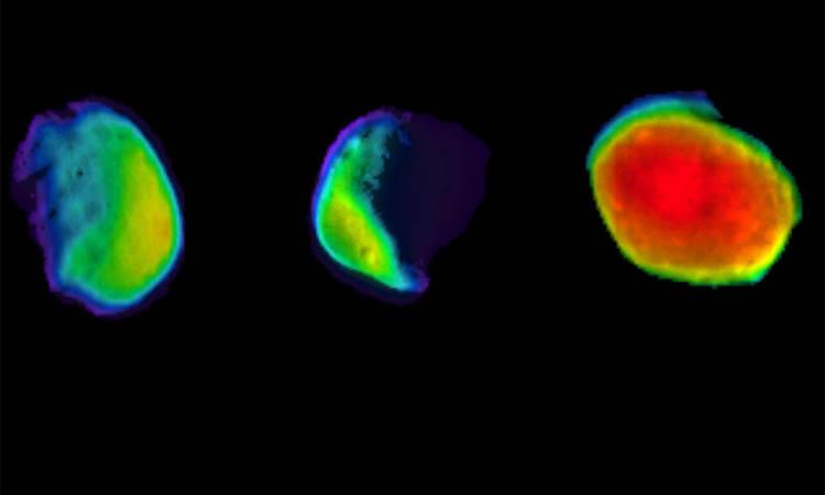 Nasa revela nueva foto de la luna desde Marte